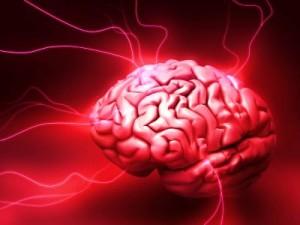 brain-alive-11-300x225