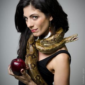 snake 7